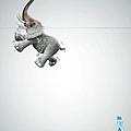 9347-lenor-elefante