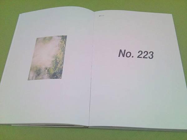 223 (13)