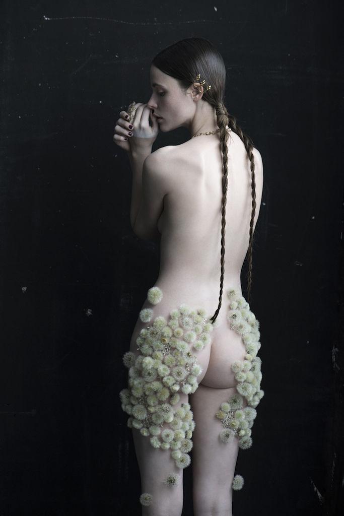 Dandelion-Isabelle-Chapuis_02.jpg