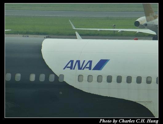TSA_84.jpg