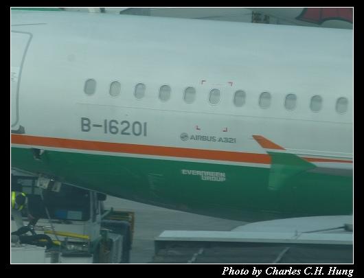 TSA_96.jpg