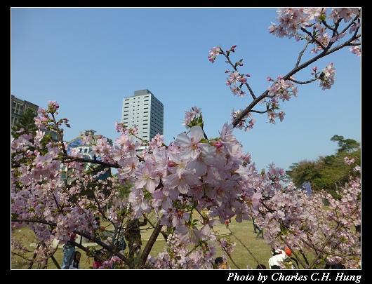 麗池公園_22.jpg