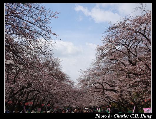 上野公園_008.jpg