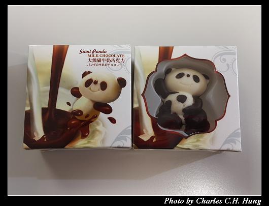大熊貓牛奶巧克力_001.jpg