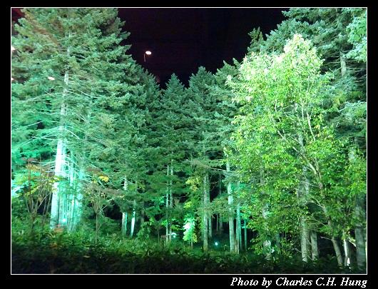 森林餐廳_011.jpg