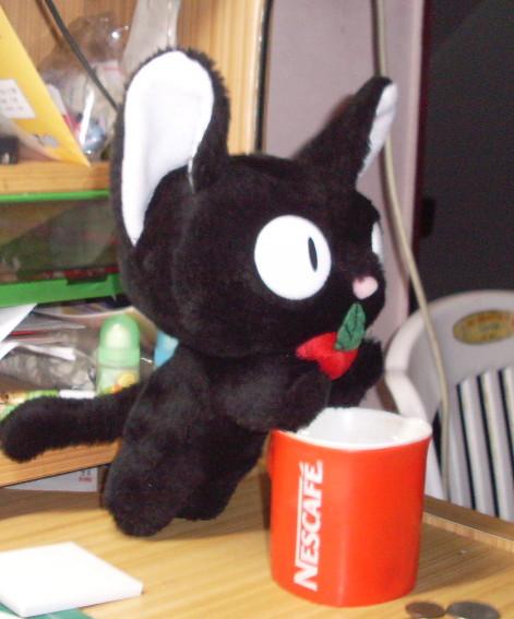 還未命名的黑貓