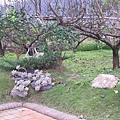 園區綠美化