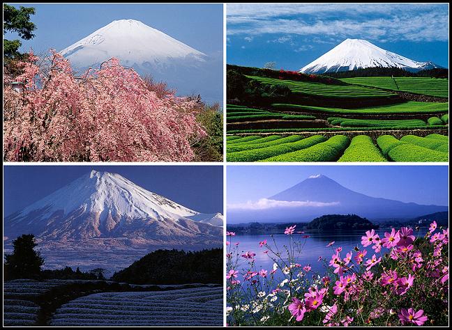 江之島fuji2.jpg