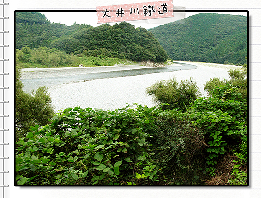 大井川鐵道17.jpg