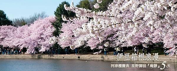 【賞‧河津櫻】日本最早の櫻花.jpg