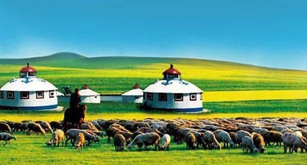 《中國國家地理》選美活動評選為『全球最美的六大草原』第一名,『偷得浮生半日閒』相信是您夢寐以求的生活要求,在這寬闊無邊的草原之中,晚上完全沒有光害,您可以徜徉在廣袤的草地上,仰天細數滿天星辰、觀看星座,抓住瞬間消失的流星許個心願!