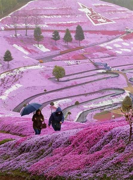 下一站 幸福 ~ 北海道