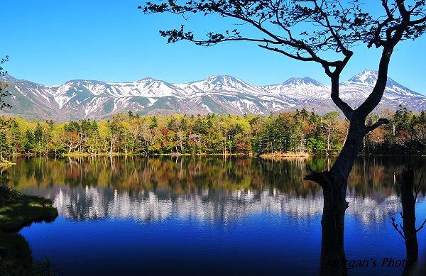 四季的美景真的都在北海道的知床五湖中上演
