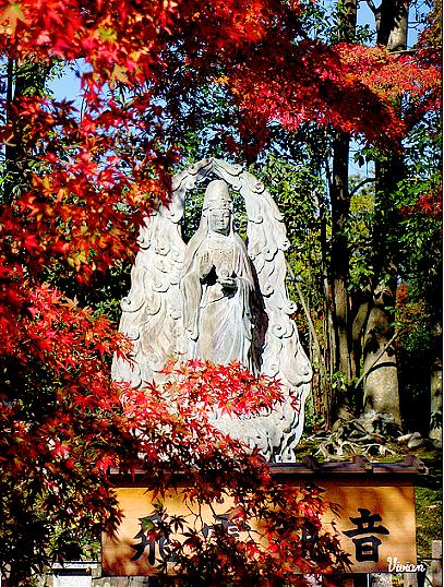 嵐山天龍寺 (30).jpg