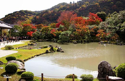 嵐山天龍寺 (7).jpg
