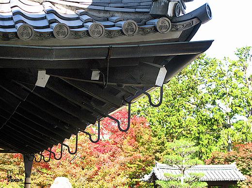 嵐山天龍寺 (12).jpg