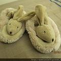 可愛的兔子鞋