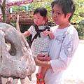 摸摸恐龍骨頭