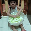 芯芯撕高麗菜