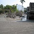 隨處可見的深厚淤泥