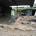 隨處可見的深厚淤泥-3