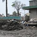 林邊車站的淤泥依舊
