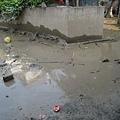 淤泥中危險的鐵絲與玻璃路邊隨處可見
