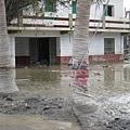 淤泥滿佈的房子.JPG