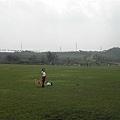 一到了大草坪,三隻狗就已經不理哥跑的好遠好遠