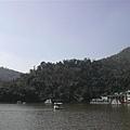 有天鵝的湖