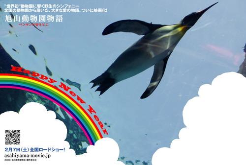 zoo_card07a.jpg