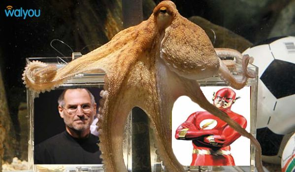 paul-the-octopus-steve-jobs-vs-the-flash.jpg