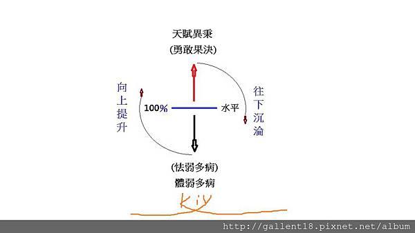 人體水平流動圖