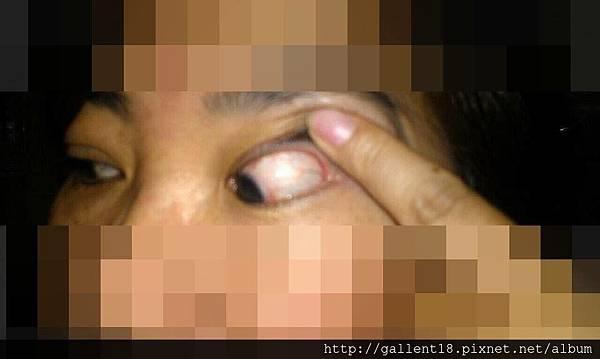 IMG_4562