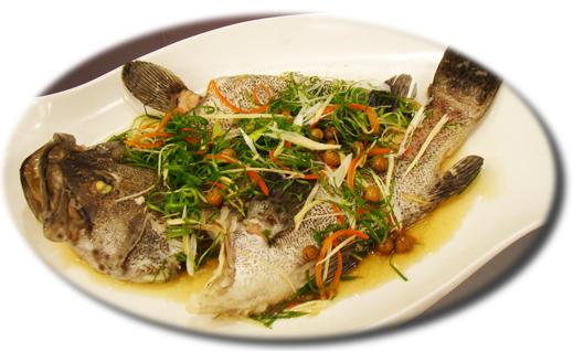 石斑魚.jpg