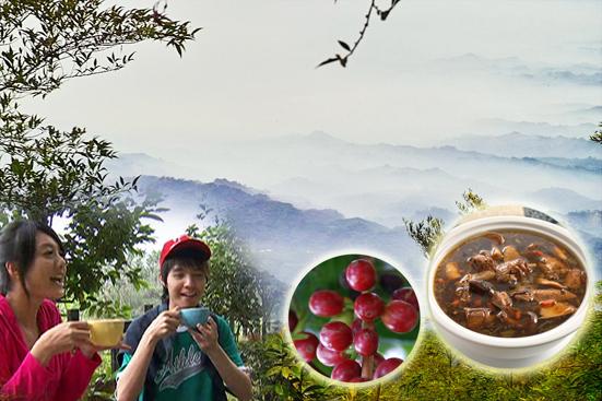 華山雲海黑蒜咖啡雞.jpg