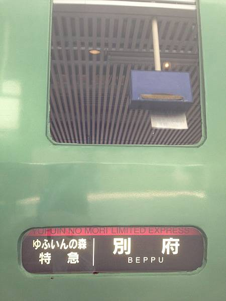 IMG_6038.JPG
