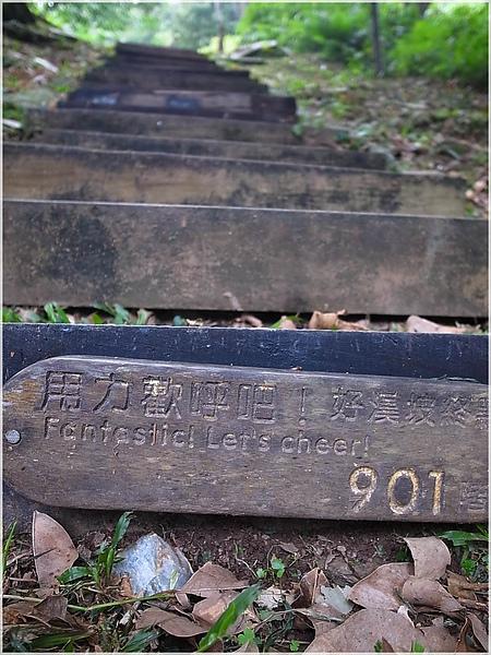 13知本.JPG