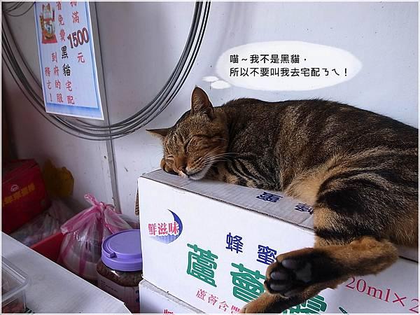 11火車環島~侯硐.JPG