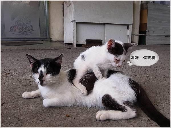 12火車環島~侯硐.JPG