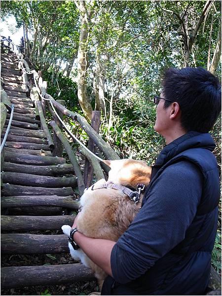 20111225-028DaKeng.JPG