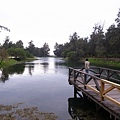 2010-11-08-半島