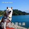Photo 13-1-20 14 02 47
