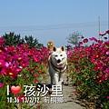 Photo 13-2-12 11 30 54