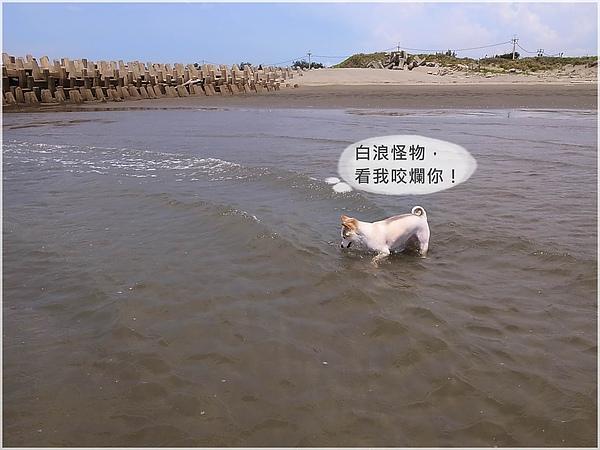 R1280636外埔+水尾.JPG
