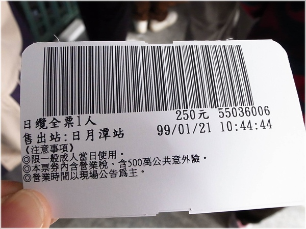 20100121-017日月潭纜車上.JPG