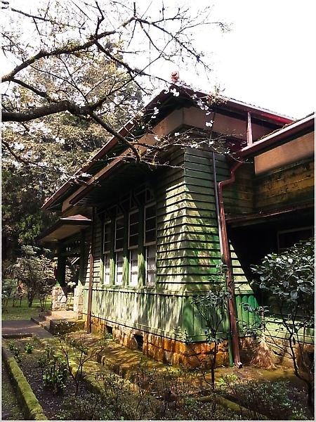 R1276605-27阿里山櫻花.JPG