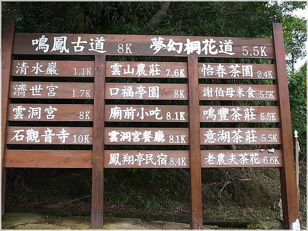 RIMG0114-23夢幻桐花步道.JPG