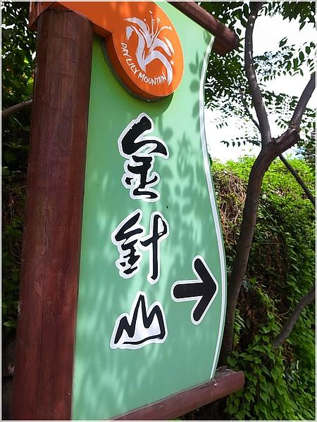 003台東金針山.JPG