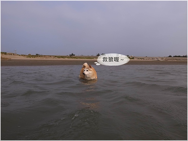 R1280322後龍水尾沙灘.JPG